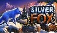 Игровой авомат Silver Fox в казино Вулкан